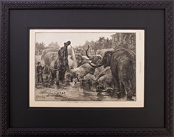 Framed 1894 Harpers Weekly Bathing the Elephants in Central Park